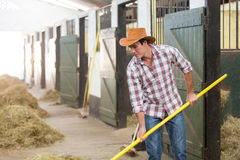 Cowboy working stable Stock Photos
