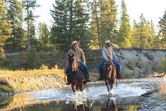 Cowboyer & hästar som går till och med floden fotografering för bildbyråer
