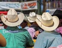 Cowboyer på rodeon Royaltyfria Bilder