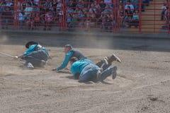 Cowboyer släpas fast smuts, medan försöka att fånga en vildhäst royaltyfria foton