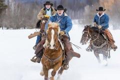 Cowboyer som samlas hästar i snön Royaltyfri Foto