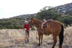 cowboyhäst Arkivfoto