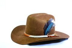 Cowboyhatt med kohudhattmusikbandet och fjädrar Royaltyfri Foto