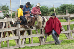 Cowboys from the Andes sitting on the fence during rodeo. June 3, 2017 Machachi, Ecuador: cowboys from the Andes sitting on the fence in the morning in the high stock images