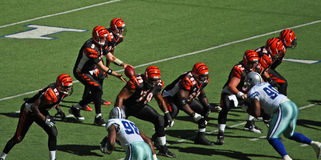 Cowboys Bengals Palmer Snap Royalty Free Stock Photography