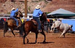 Cowboys and bull Stock Image