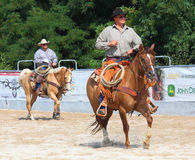 The Cowboys in a Calf roping competition. Stock Image