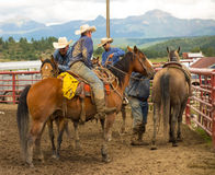 Cowboys covered with mud at a rodeo in colorado Stock Photos