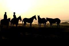 Cowboys e por do sol Fotografia de Stock