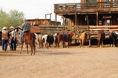 Cowboys e seus cavalos imagem de stock royalty free