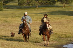 Cowboys on Horseback. Two cowboys riding horses through grassy meadow Royalty Free Stock Image