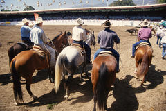 Cowboys on horses at rodeo Royalty Free Stock Image