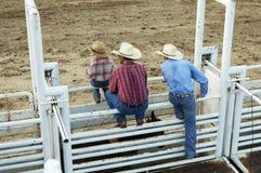 Cowboys, jeune et vieux image libre de droits