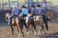 Cowboys på hästar Arkivbild