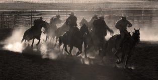 Cowboys på hästar Royaltyfria Bilder