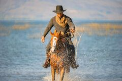 Free Cowboys Riding A Horses In The Water Royalty Free Stock Images - 220519789
