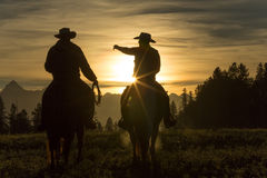 Cowboys riding across grassland early morning, British Colombia,. Cowboys riding across grassland with mountains behind in the early morning, British Colombia Stock Images