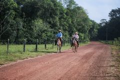 Cowboys riding on the farm stock photo