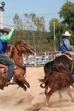 Cowboys at the rodeo. Calf roping competition Stock Images