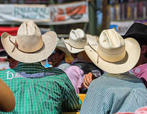 Cowboys at the Rodeo Royalty Free Stock Images