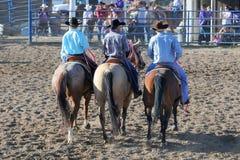 Cowboys sur des chevaux image libre de droits