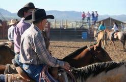 Cowboys sur des chevaux photos libres de droits
