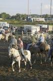 Cowboys sur des chevaux avec la corde au rodéo de PRCA Image libre de droits