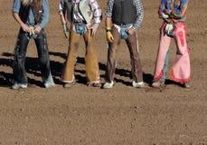 Cowboys u. Mäuler Stockfoto