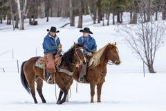 Cowboys vivant en troupe des chevaux dans la neige Photo stock