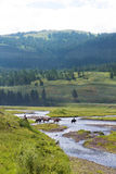 Cowboys in Yellowstone National Park Royalty Free Stock Photography