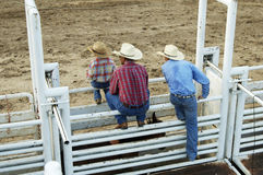 Cowboys, young and old. Cowboys, young and old watch the rodeo action from the gates Royalty Free Stock Image