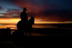 cowboysilhouette royaltyfri foto