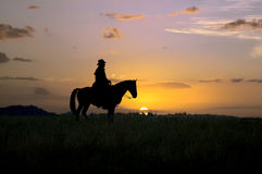 cowboysilhouette Arkivfoto