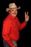 Cowboywellenartig bewegen Stockbilder