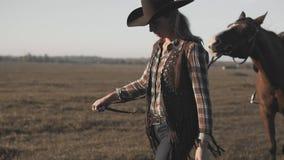 Cowgirl che prende sulla passeggiata il suo cavallo scuro dalle redini su alba Camminata vigorosa del cavallo stock footage