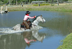 Cowgirl Crossing Pond with Reflection. Cowgril on gray horse crossing pond - reflection royalty free stock photos