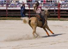 Cowgirl, das ein Pferd reitet Lizenzfreie Stockbilder