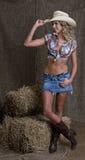 Cowgirl di Seyx Immagine Stock Libera da Diritti