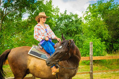 Cowgirl doing horse riding on countryside meadow. Taking care of animals, horsemanship, western competitions concept. Cowgirl doing horse riding on countryside stock image