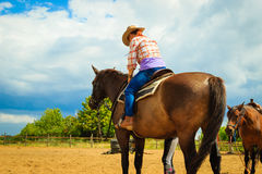 Cowgirl doing horse riding on countryside meadow. Taking care of animals, horsemanship, western competitions concept. Cowgirl doing horse riding on countryside stock images