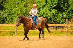 Cowgirl doing horse riding on countryside meadow. Taking care of animals, horsemanship, western competitions concept. Cowgirl doing horse riding on countryside royalty free stock images