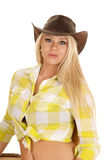 Cowgirl green plaid shirt close serious look Royalty Free Stock Images
