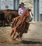 Cowgirl, Horse, Cowboy, Attractive Royalty Free Stock Images