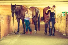 Cowgirl and jockey walking with horses in stable Stock Image