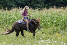 Free Cowgirl On A Horse Royalty Free Stock Images - 181252939