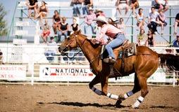 Cowgirl-Pferd Stockfotografie