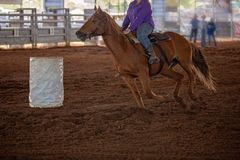 Cowgirl Rides At Speed In Barrel Racing Competition At Rodeo. A cowgirl rides her horse at speed in a barrel racing competition at an indoor country rodeo royalty free stock photos