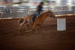Cowgirl Rides Horse In Barrel Racing Event At A Rodeo Royalty Free Stock Photo