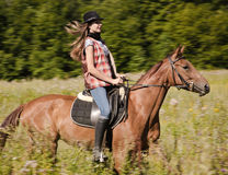 Cowgirl riding a bay horse Stock Photos