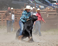 cowgirl Ritt-em! Royaltyfria Foton